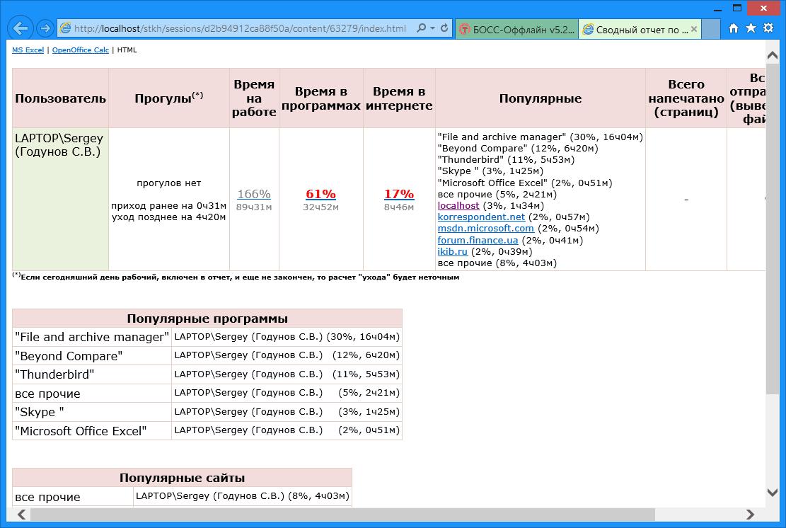 БОСС-Оффлайн - Сводный отчет